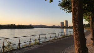 Rhine bank at Bonn, early morning